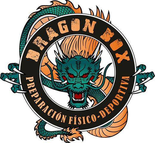Logo Dragon Box