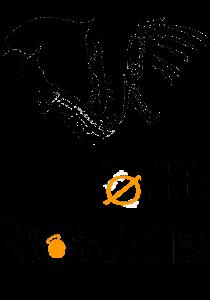 Logo Foring Crossfit